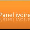 Panel Ivoire: Administration de réunion de groupe pour vos offres,produits, services…