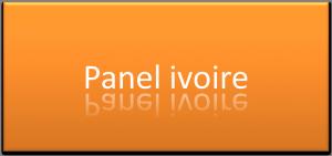 Panel Ivoire: Administration de réunion de groupe pour vos offres,produits, services... panel-ivoire1-300x141